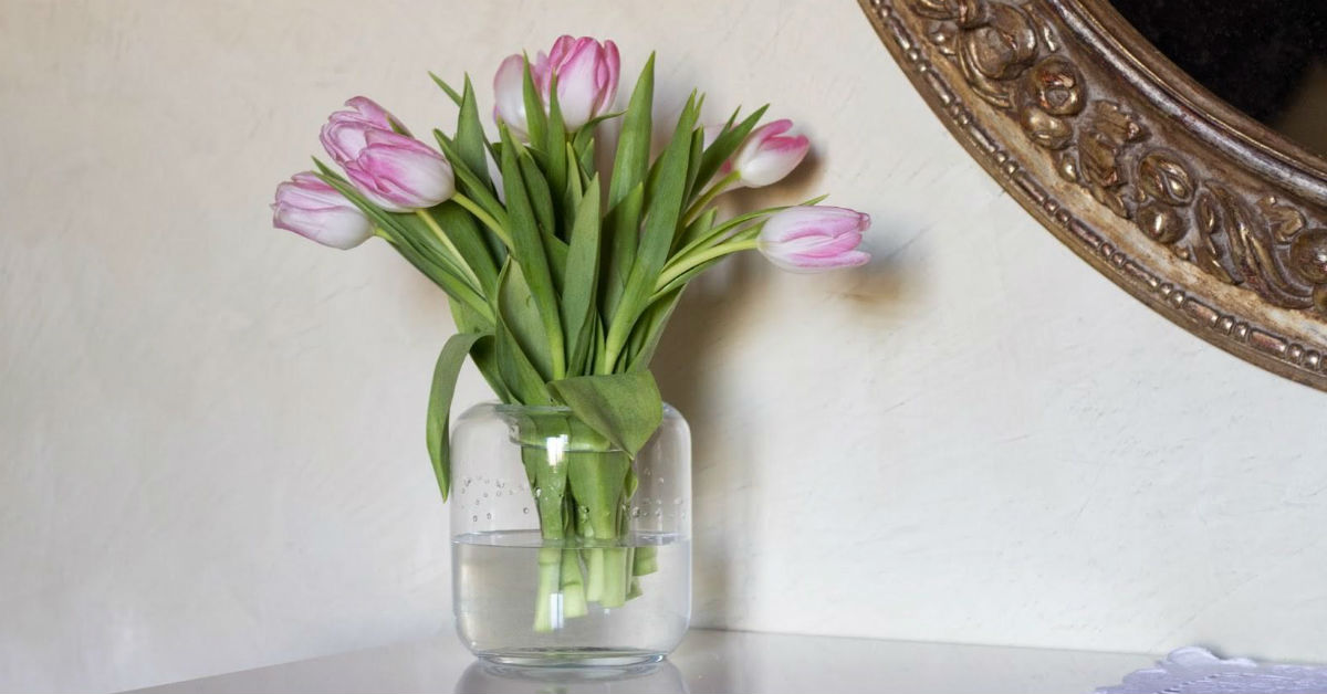 come-sistemare-nel-vaso-i-fiori-recisi_d45cc70842eb96de31649920376c42d1