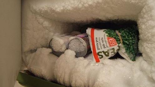 freezer2-1
