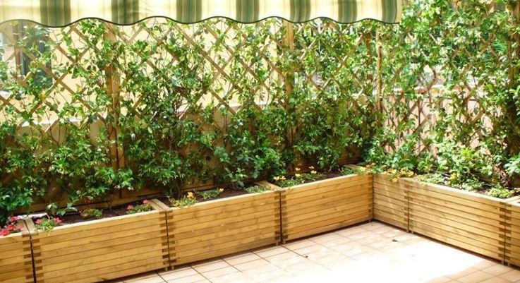 piante-da-balcone_ng3-1