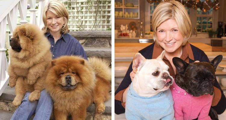 Martha Stewart hoje