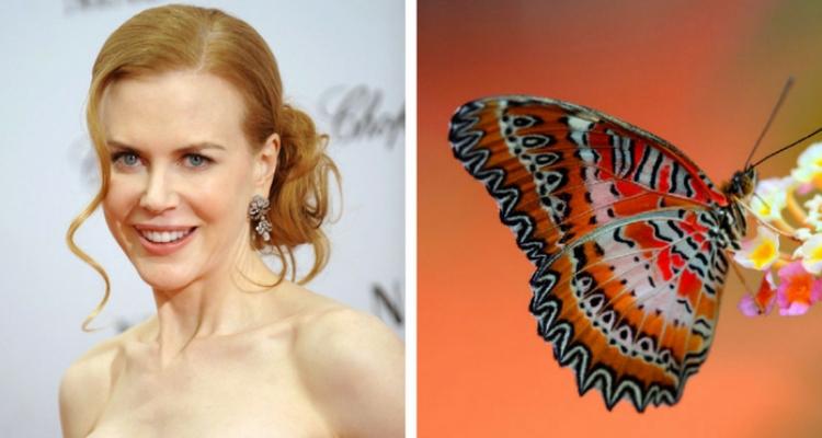 Nicole Kidman fobia