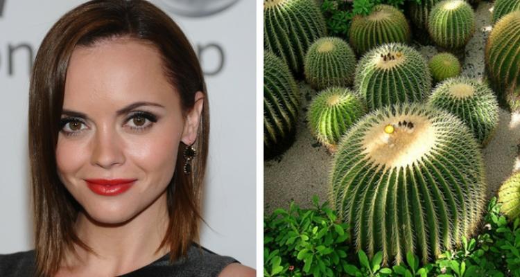 Christina Ricci medo de plantas