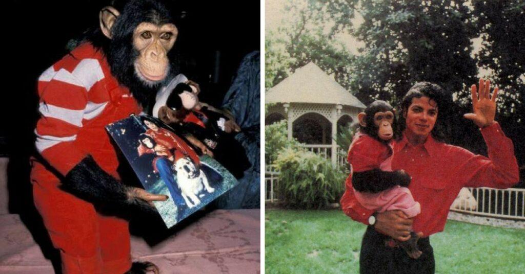 michael jackson e chimpanzé